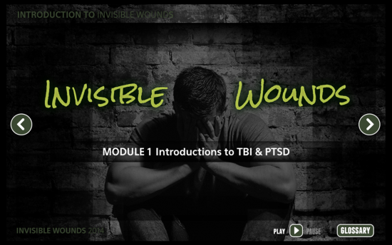 Screenshot of the Invisible Wounds project on a laptop computer