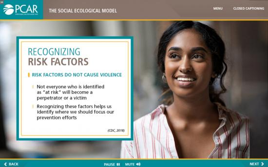 Screenshot of the Rape Prevention and Education  project on a laptop computer