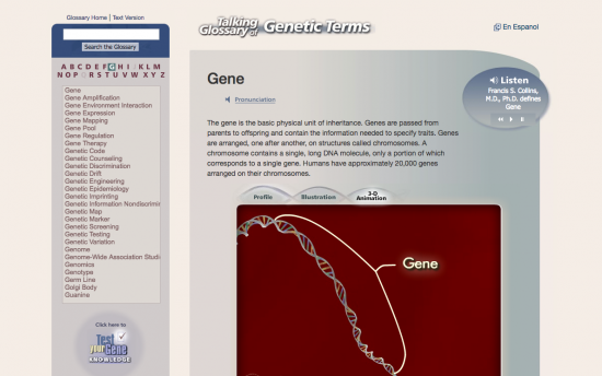 Screenshot of the Talking Glossary of Genetic Terms project on a laptop computer