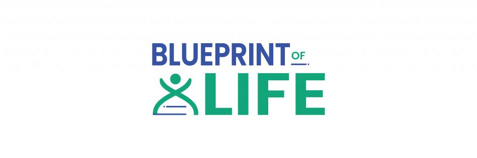 Blueprint of Life logo